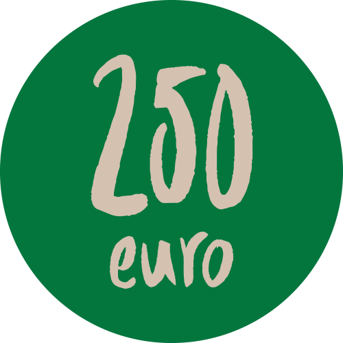 Donazione 250 euro